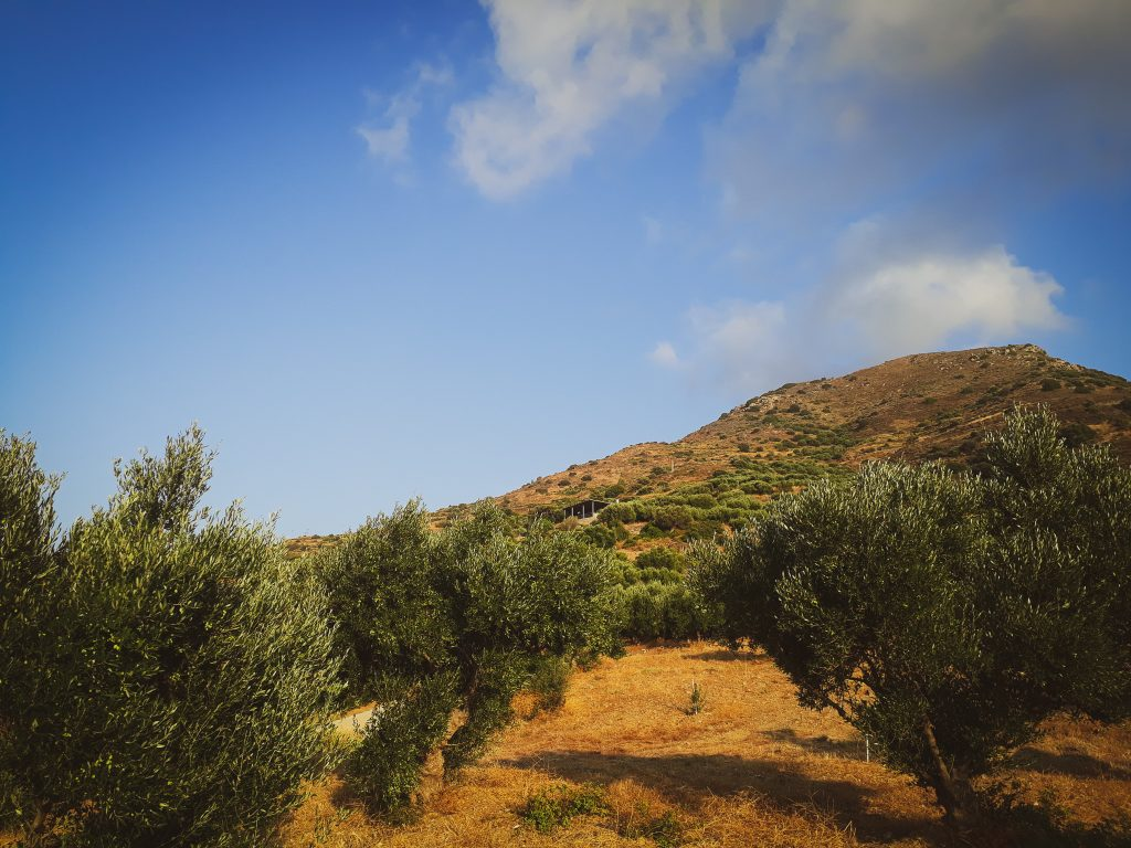 Gitalian World Blog-Kreta